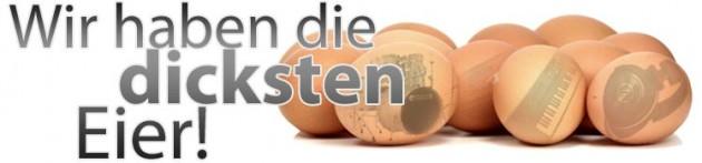 teaser-eggs13-cms